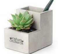 975412451-114 - Kikkerland® Small Concrete Desk Planter - thumbnail