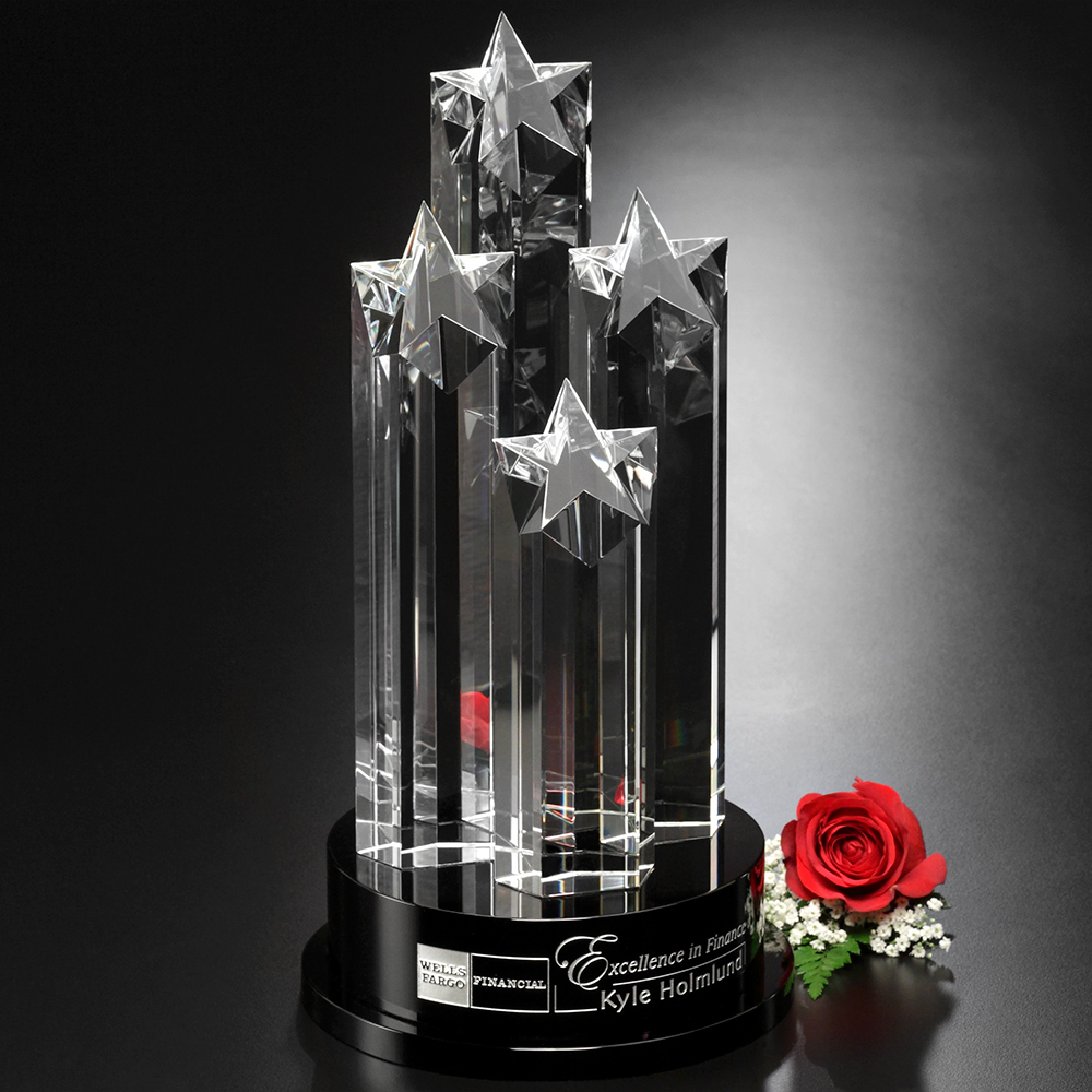 "153378163-133 - Constellation Award 14"" - thumbnail"