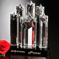 "743986651-133 - Prominence Award 9"" - thumbnail"