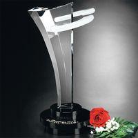 "752242730-133 - Innovation Award 12"" - thumbnail"