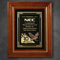 """782865253-133 - Americana Plaque with Velour 15-3/4"""" x 12-3/4"""" - thumbnail"""